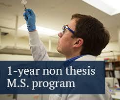 Ph D  Curriculum   Course Descriptions   Tumor Biology Program