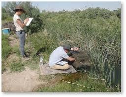 Image result for Koytendag State Nature Reserve