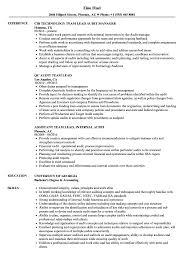 audit team lead resume samples velvet jobs