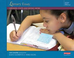 additional units literary essay opening texts and seeing more grade 5