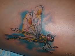 фото тату стрекоза клуб татуировки фото тату значения эскизы