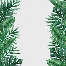Template Tree Palm Tree Leaves Background Template Tropical Greeting Card