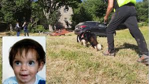 Bambino di 2 anni scomparso sul Mugello: notte di ... ▷ Ritrovato il bambino  di 2 anni ▷ Shotoe