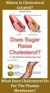 Cholesterollevels How Much Cholesterol In 0p How To Remove