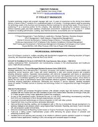 Best Technical Project Manager Resume Example Livecareer It Sample