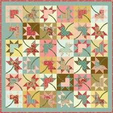 235 best Free Pattern Downloads images on Pinterest | Quilting ... & Maple Stars Quilt Pattern Download Adamdwight.com