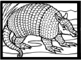 Small Picture Mexico Coloring Pages