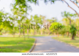 summer outdoor backgrounds. Blur Background Park Summer Outdoor Backgrounds P