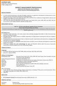 Sql Server Developer Resume Examples Java Developer Resume Cover Letter Portfolio Template Picture 49