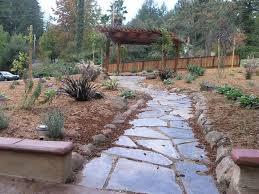 Go Green With A Lawnfree YardLawn Free Backyard