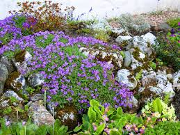 Small Picture How to make a rockery Saga