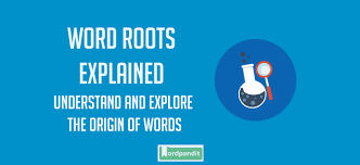 Word Origin List Of Words Based On Ambi Root Word With Their Meaning