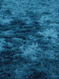 turquoise shag rug. Quirk Turquoise Shag Rug From The Rugs Collection At Modern Free Standard Shipping When You Purchase This Item* N
