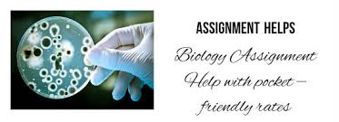 biology assignment help in get biggest discount up  biology assignment help