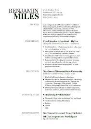 Freelance Writer Resume Sample Freelance Writing Resume Samples Resume For Study 21