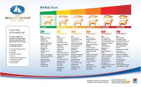 Dog Weight Chart Healthy Dog Weight Chart Www Bedowntowndaytona Com
