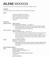 Volunteer Resume Template Create My Resume High School Volunteer ...