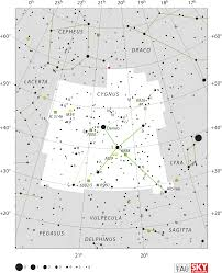Star Chart Without Constellations Cygnus Constellation Wikipedia