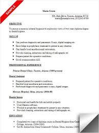 Sample Dental Hygiene Resume 28 Dental Hygienist Resume Template Robertbathurst