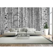 birch tree forest in black and white wallpaper mural various sizes 5041234