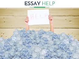 best essay help from papers writings net  effective essay help