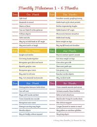 Baby Milestones Chart By Month Rainbow Baby Toddler Monthly Milestones Checklist 1 24 Months 10 Off