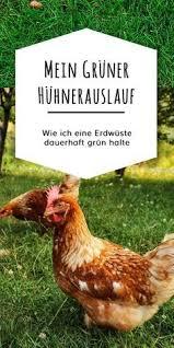 hühner durchfall grün