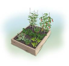 Small Picture Easy and Tasty 4 x 4 foot Kids Garden Bonnie Plants