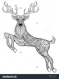 Small Picture Deer Coloring Pages Perfect White Tailed Deer Coloring Page Free
