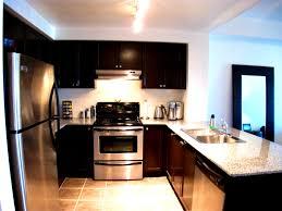 Condo Kitchen Remodel Interior Knockout Condo Kitchen Remodel Pictures Design Ideas