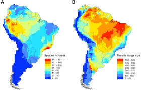 Geographic Patterns Best Geographic Patterns Of Anuran Biodiversity In South Ame Openi