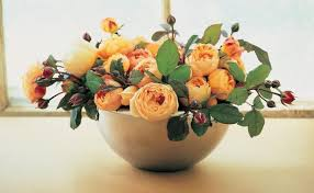Small Picture Tips for cutting garden roses to bring them in the house Fine