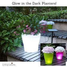 rust oleum glow in the dark paint flower pots. diy yard art and garden ideas homemade outdoor crafts. glow in the dark planter experiment rust oleum paint flower pots