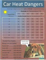 Heat Car Safety Chart Cpr For Dogs Diy Cat Toys Doodle Dog