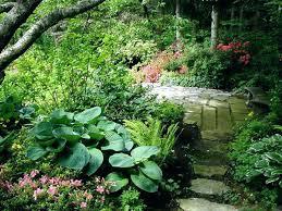 small shade garden ideas ideas for shade garden small shade garden ideas shade garden home design