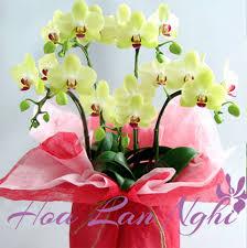 Chúc Mừng Sinh Nhật Bảo Minh Trang  - Page 2 Images?q=tbn:ANd9GcTDEbcr0dohGvpGo5tQ4-N3-KdAZbgFxxNBrufAv4FVUTQjiQKzRw