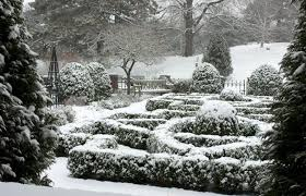 Small Picture 21 Beautiful Winter Gardens with Snow Capped Plants and Smart