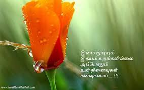 Love Kavithai In Tamil Rose Ninaivugal Idhayam Urangavillai Sogam Impressive Thanimai Kavithai