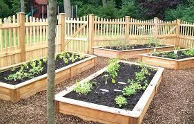 small veg garden ideas vegetable garden ideas design small veg garden ideas uk