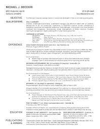 Software Engineer CV Sample Key Skills     Real solutions to engineering