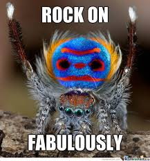 Spider Memes. Best Collection of Funny Spider Pictures via Relatably.com