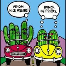Image result for gardening jokes