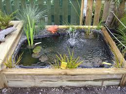 paul and kirsty thomas are proud to supply high quality water lilies lotus and aquatic plants to retailers throughout new zealand