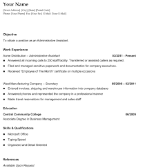 General Chronological Resume The Resume Template Site The