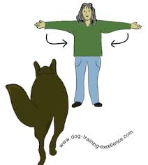 Dog Training Hand Signals A Picture Instructional Guide