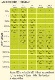 German Shepherd Puppy Food Chart 25 Methodical Puppies Diet Chart