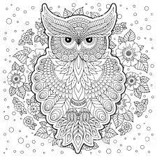 Kleurplaat Met Schattige Uil En Florale Frame Stockvectorkunst En