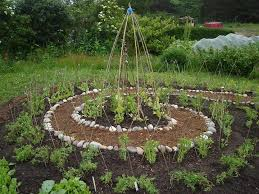 Small Picture 25 best Spiral garden ideas on Pinterest Garden ideas diy