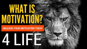 what is motivation do you know these powerful what is your what is motivation do you know these 2 powerful what is your motivation