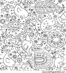 Small Picture 338 best Birds Butterflies Bugs Coloring For Adults Art Pages